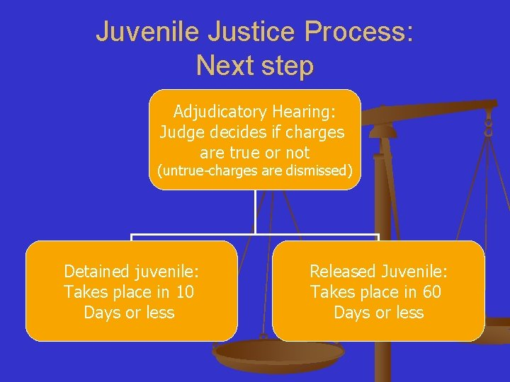 Juvenile Justice Process: Next step Adjudicatory Hearing: Judge decides if charges are true or