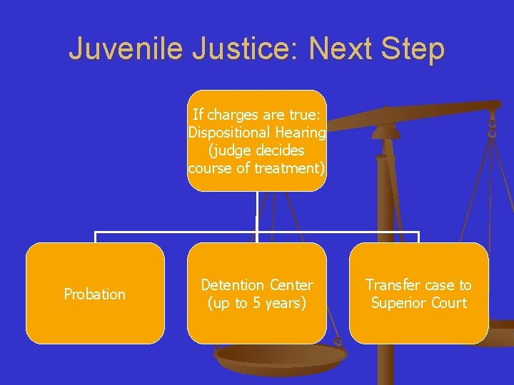 Juvenile Justice: Next Step If charges are true: Dispositional Hearing (judge decides course of