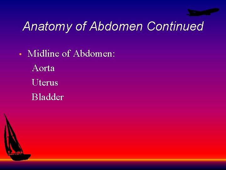 Anatomy of Abdomen Continued Midline of Abdomen: Aorta Uterus Bladder •
