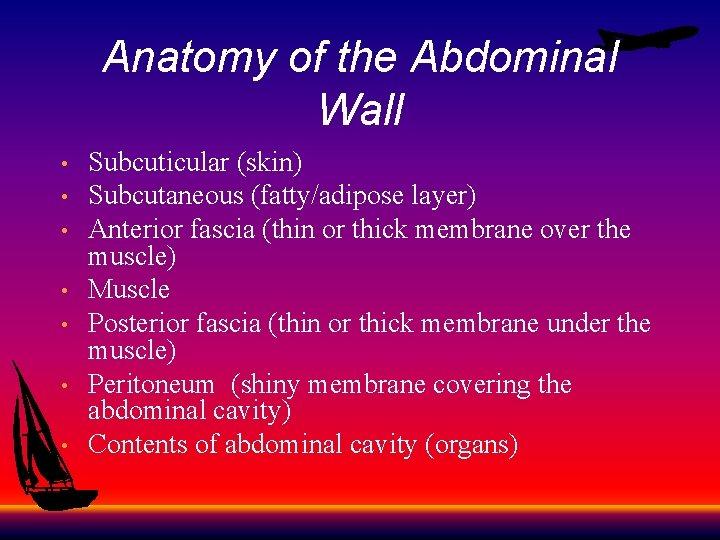 Anatomy of the Abdominal Wall • • Subcuticular (skin) Subcutaneous (fatty/adipose layer) Anterior fascia