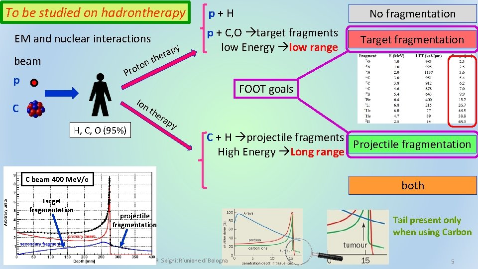 To be studied on hadrontherapy EM and nuclear interactions beam t n o t