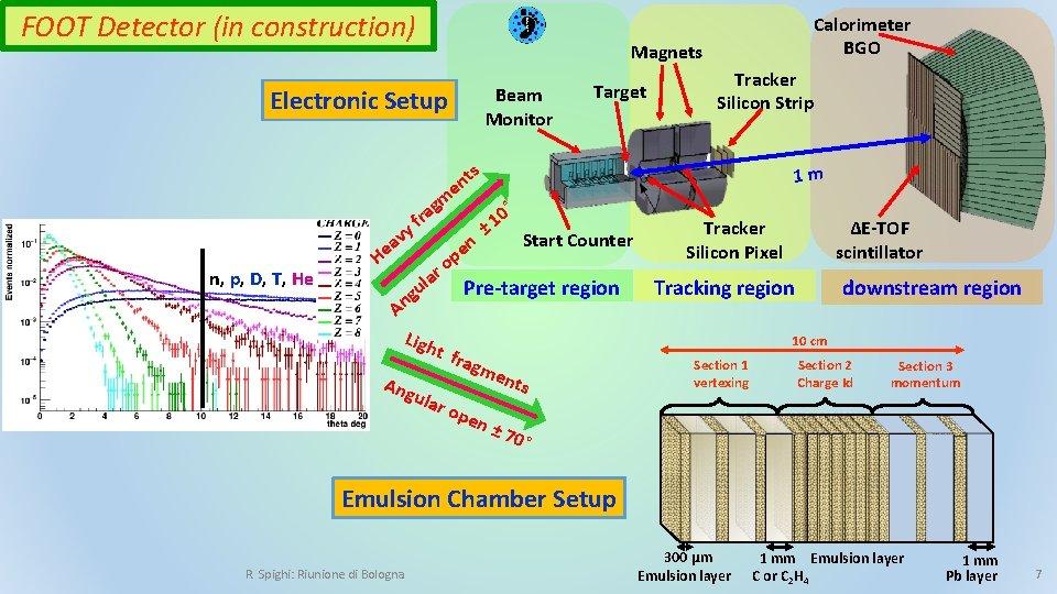 FOOT Detector (in construction) Electronic Setup n, p, D, T, He Calorimeter BGO Magnets