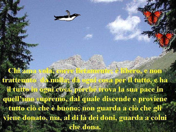 Chi ama vola, corre lietamente; è libero, e non trattenuto da nulla; dà ogni