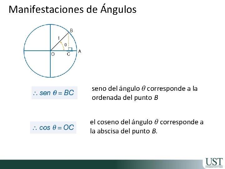 Manifestaciones de Ángulos seno del ángulo θ corresponde a la ordenada del punto B