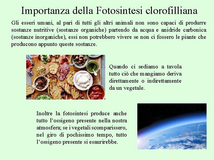 Importanza della Fotosintesi clorofilliana Gli esseri umani, al pari di tutti gli altri animali