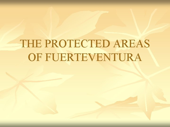 THE PROTECTED AREAS OF FUERTEVENTURA