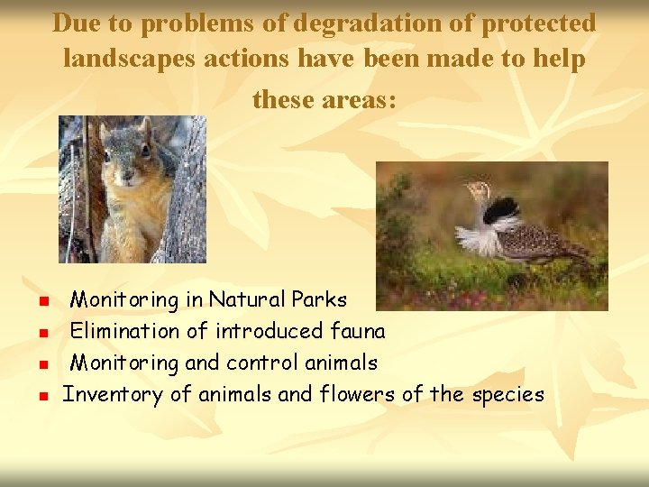 Due to problems of degradation of protected landscapes actions have been made to help