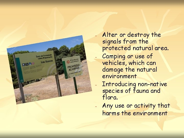 - - Alter or destroy the signals from the protected natural area. Camping or