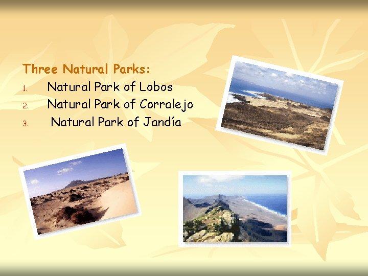 Three Natural Parks: 1. Natural Park of Lobos 2. Natural Park of Corralejo 3.
