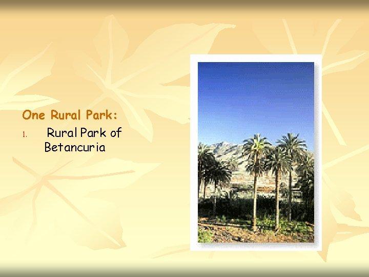 One Rural Park: 1. Rural Park of Betancuria