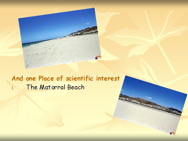 And one Place of scientific interest 1. The Matorral Beach