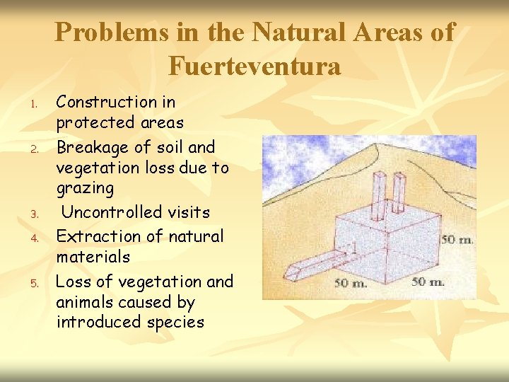 Problems in the Natural Areas of Fuerteventura 1. 2. 3. 4. 5. Construction in