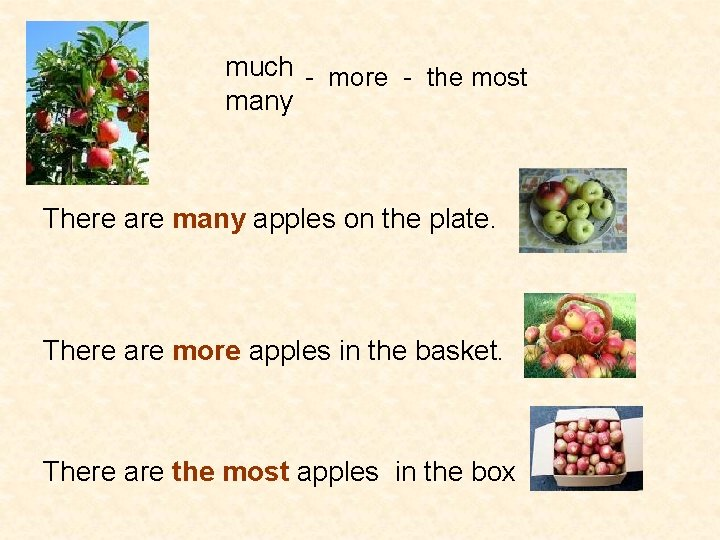much - more - the most many There are many apples on the plate.