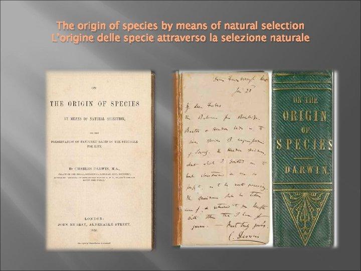 The origin of species by means of natural selection L'origine delle specie attraverso la