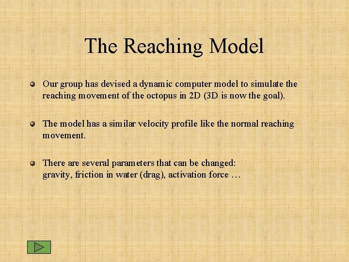 The Reaching Model Our group has devised a dynamic computer model to simulate the