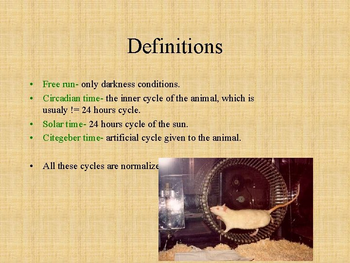 Definitions • Free run- only darkness conditions. • Circadian time- the inner cycle of