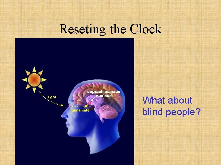 Reseting the Clock What about blind people?
