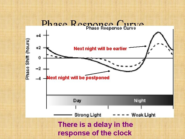 Phase Response Curve Next night will be earlier Next night will be postponed There