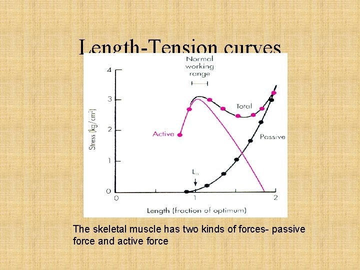 Length-Tension curves The skeletal muscle has two kinds of forces- passive force and active