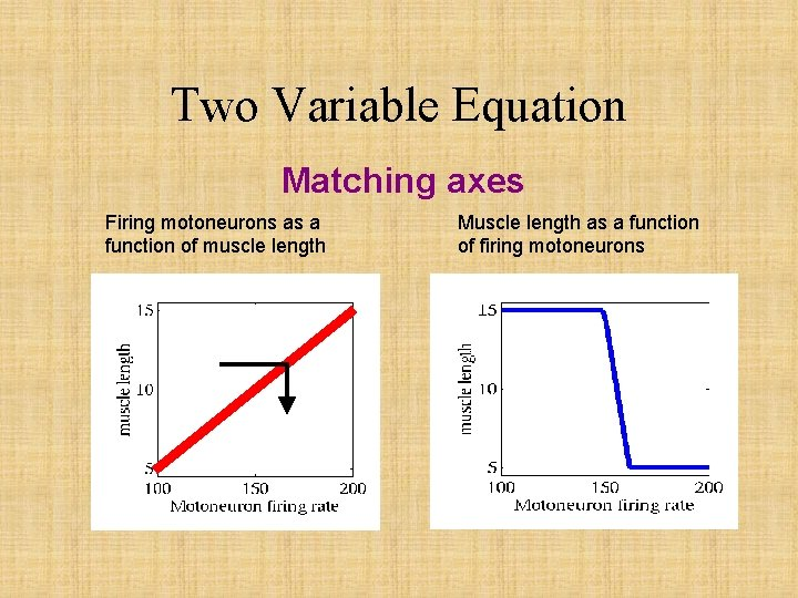 Two Variable Equation Matching axes Firing motoneurons as a function of muscle length Muscle