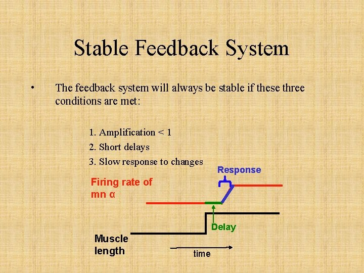 Stable Feedback System • The feedback system will always be stable if these three