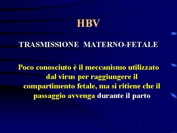 HBV TRASMISSIONE MATERNO-FETALE Poco conosciuto è il meccanismo utilizzato dal virus per raggiungere il