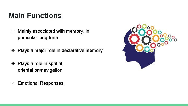 Main Functions ❖ Mainly associated with memory, in particular long-term ❖ Plays a major
