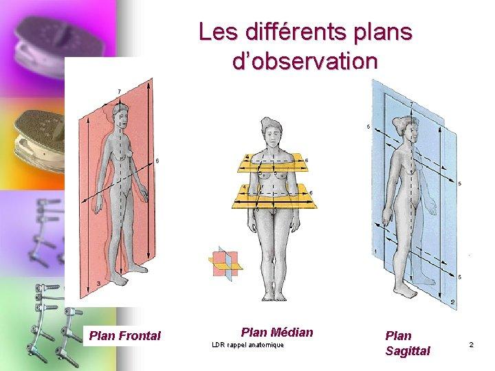 Les différents plans d'observation Plan Frontal Plan Médian LDR rappel anatomique Plan Sagittal 2