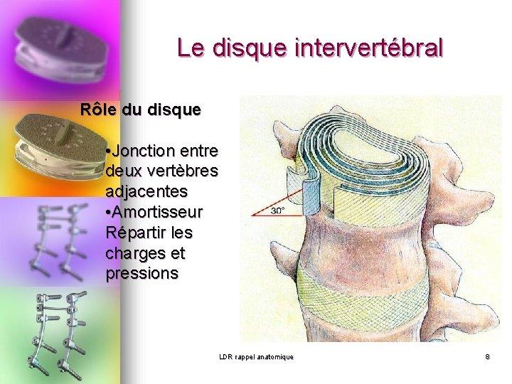 Le disque intervertébral Rôle du disque • Jonction entre deux vertèbres adjacentes • Amortisseur