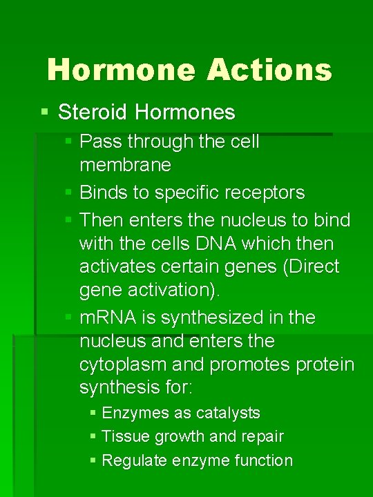 Hormone Actions § Steroid Hormones § Pass through the cell membrane § Binds to