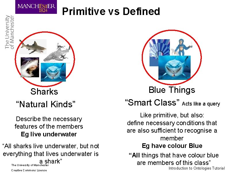 """Primitive vs Defined Sharks """"Natural Kinds"""" Describe the necessary features of the members Eg"""