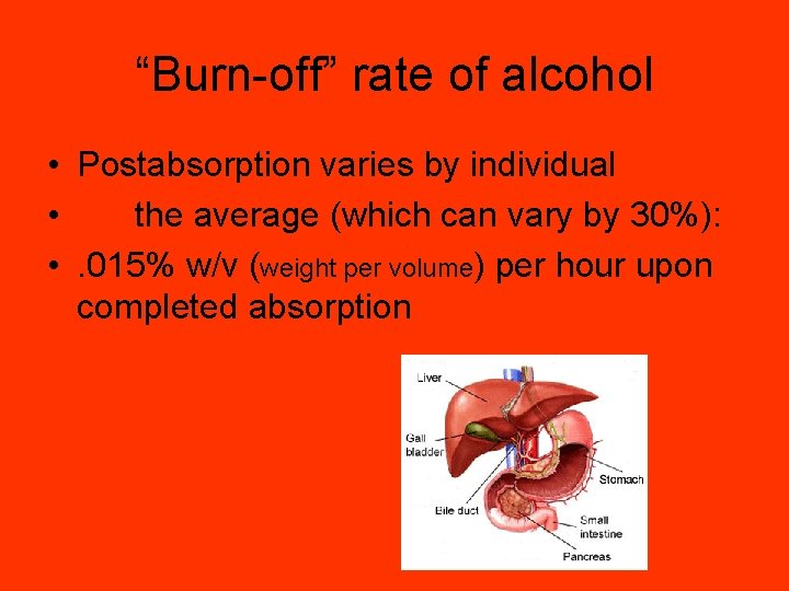 """""""Burn-off"""" rate of alcohol • Postabsorption varies by individual • the average (which can"""