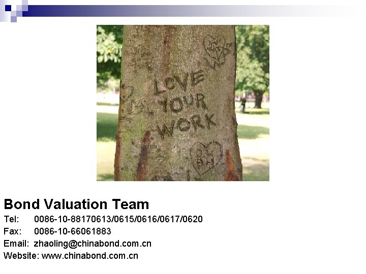 Bond Valuation Team Tel: 0086 -10 -88170613/0615/0616/0617/0620 Fax: 0086 -10 -66061883 Email: zhaoling@chinabond. com.