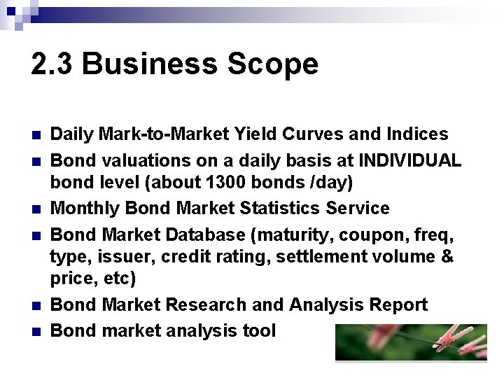 2. 3 Business Scope n n n Daily Mark-to-Market Yield Curves and Indices Bond