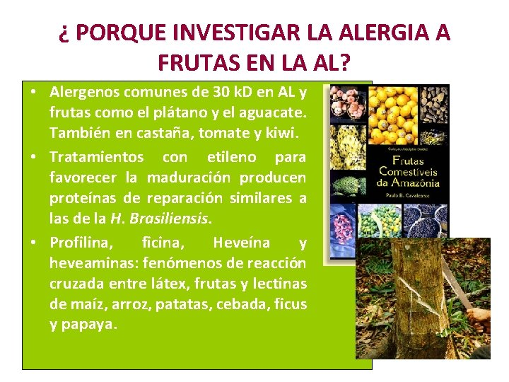¿ PORQUE INVESTIGAR LA ALERGIA A FRUTAS EN LA AL? • Alergenos comunes de