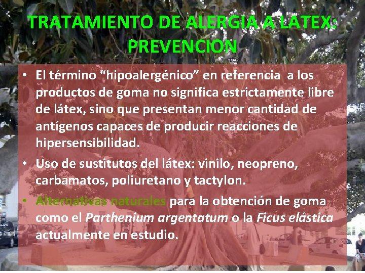 """TRATAMIENTO DE ALERGIA A LATEX: PREVENCION • El término """"hipoalergénico"""" en referencia a los"""
