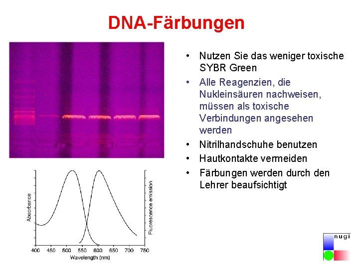 DNA-Färbungen • Nutzen Sie das weniger toxische SYBR Green • Alle Reagenzien, die Nukleinsäuren