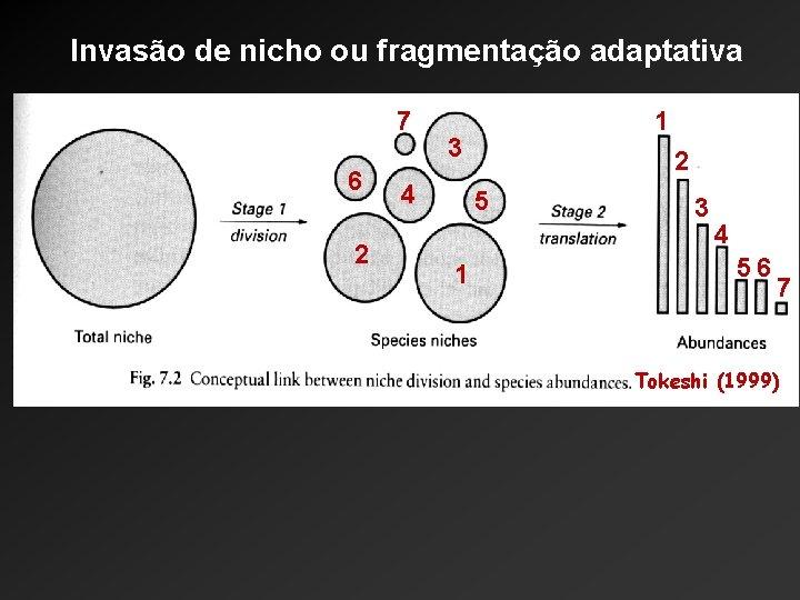 Invasão de nicho ou fragmentação adaptativa 7 6 2 1 3 4 2 5