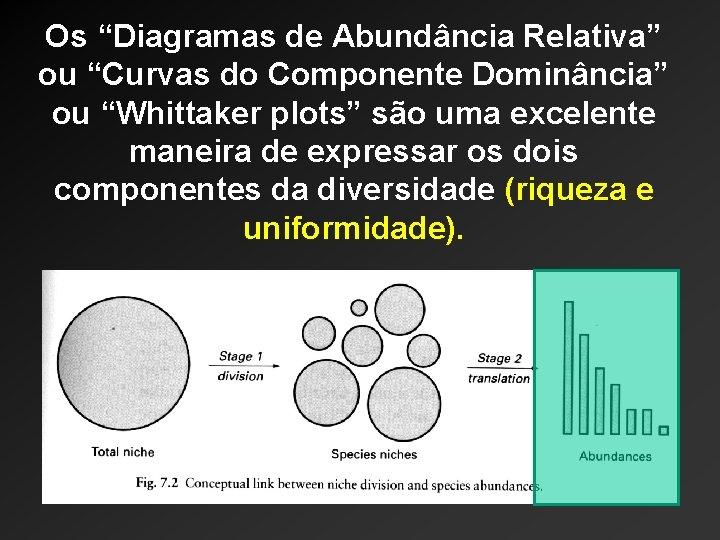 """Os """"Diagramas de Abundância Relativa"""" ou """"Curvas do Componente Dominância"""" ou """"Whittaker plots"""" são"""