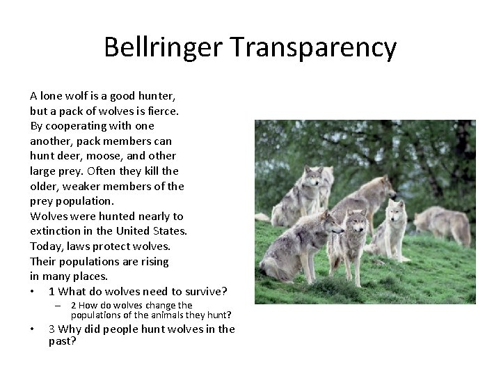 Bellringer Transparency A lone wolf is a good hunter, but a pack of wolves