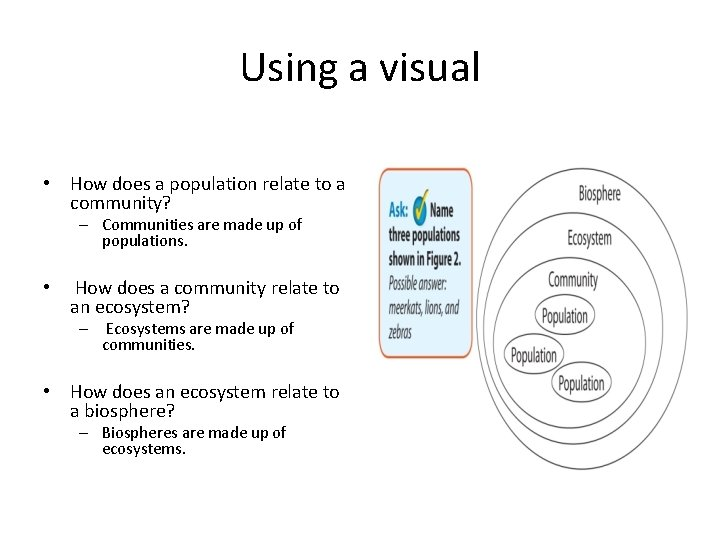 Using a visual • How does a population relate to a community? – Communities