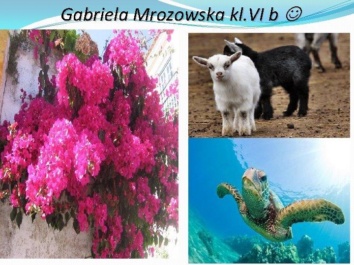Gabriela Mrozowska kl. VI b