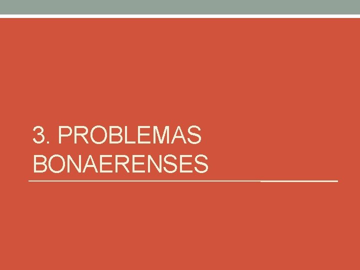 3. PROBLEMAS BONAERENSES