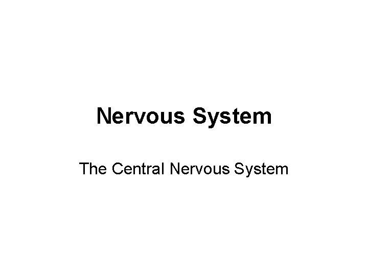 Nervous System The Central Nervous System