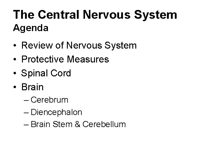 The Central Nervous System Agenda • • Review of Nervous System Protective Measures Spinal