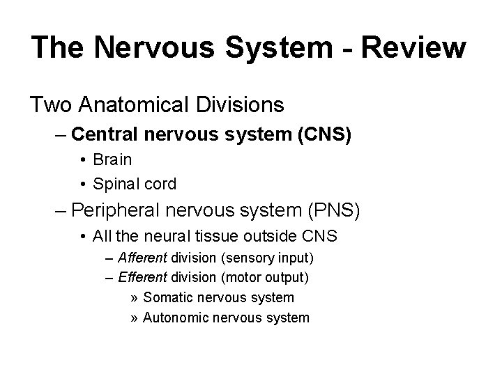 The Nervous System - Review Two Anatomical Divisions – Central nervous system (CNS) •