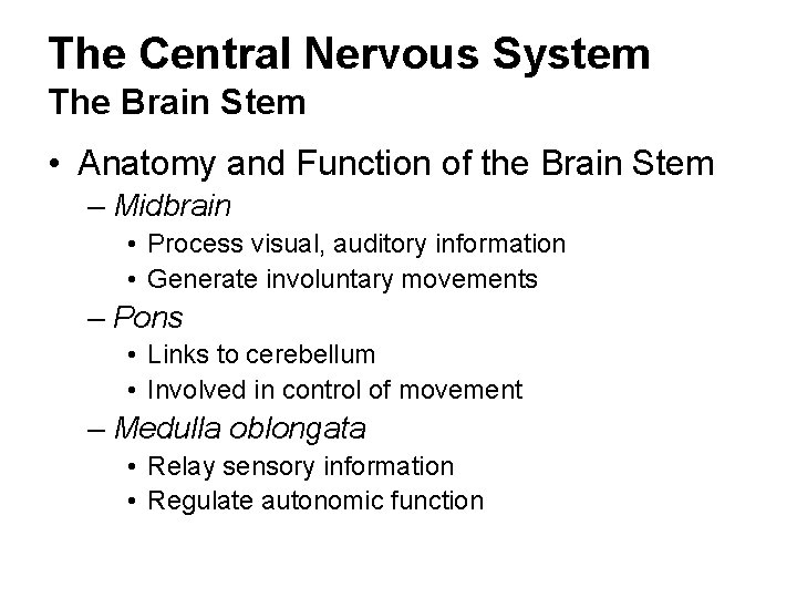 The Central Nervous System The Brain Stem • Anatomy and Function of the Brain