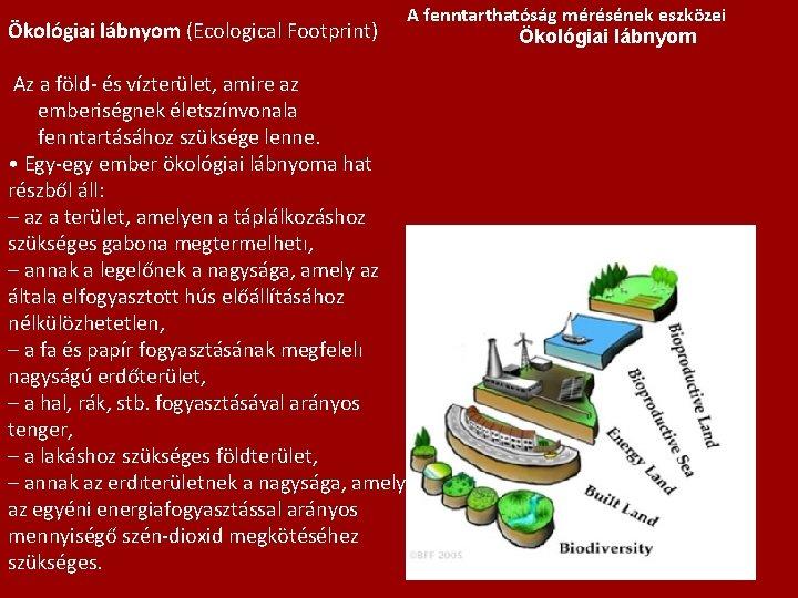 Ökológiai lábnyom (Ecological Footprint) Az a föld- és vízterület, amire az emberiségnek életszínvonala fenntartásához