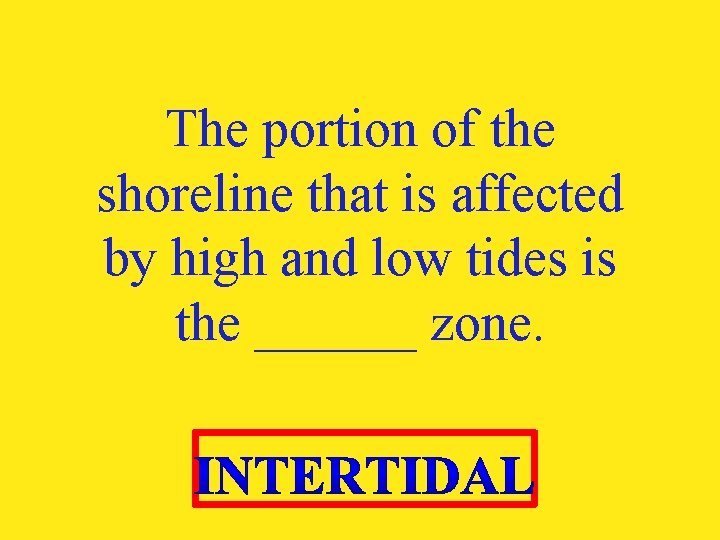 The portion of the shoreline that is affected by high and low tides is