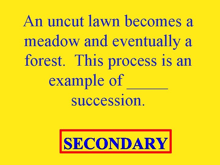 An uncut lawn becomes a meadow and eventually a forest. This process is an